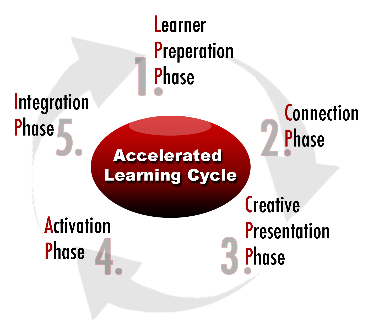 Classroom Design Models ~ Accelerated learning cycle